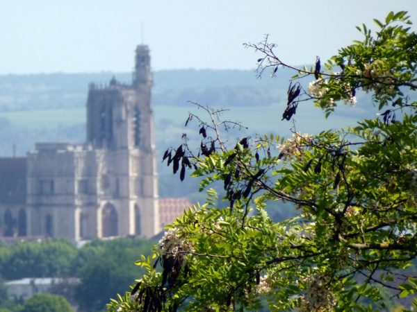 Sens' cathedral from the trail